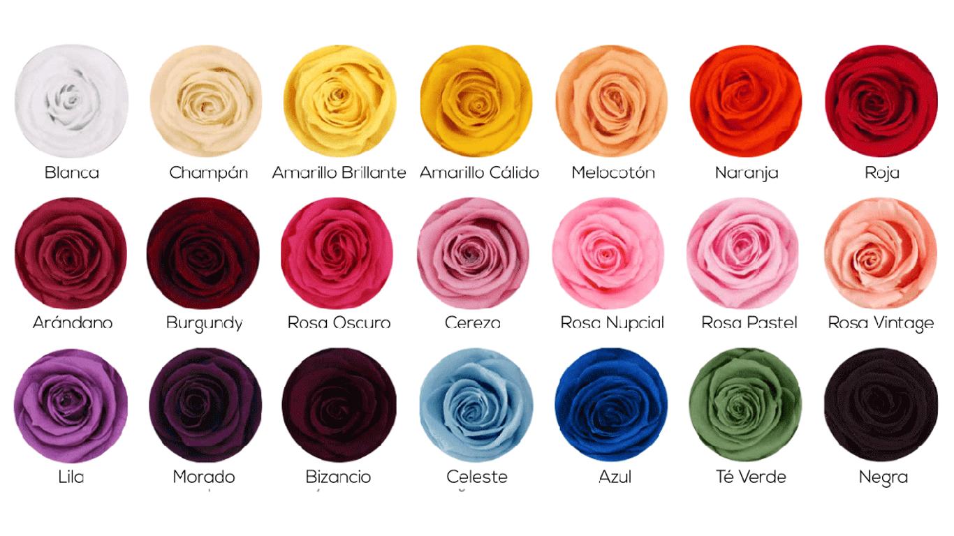 ️ Caja De Rosas Preservadas