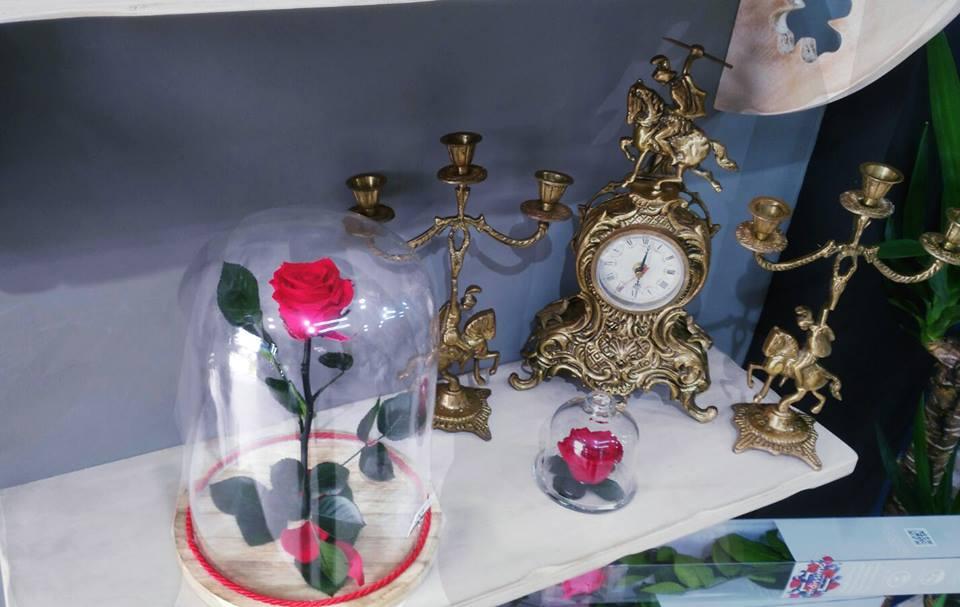 Rosas Eternas Bartas – Todos los tamaños – Envío 24h Gratis