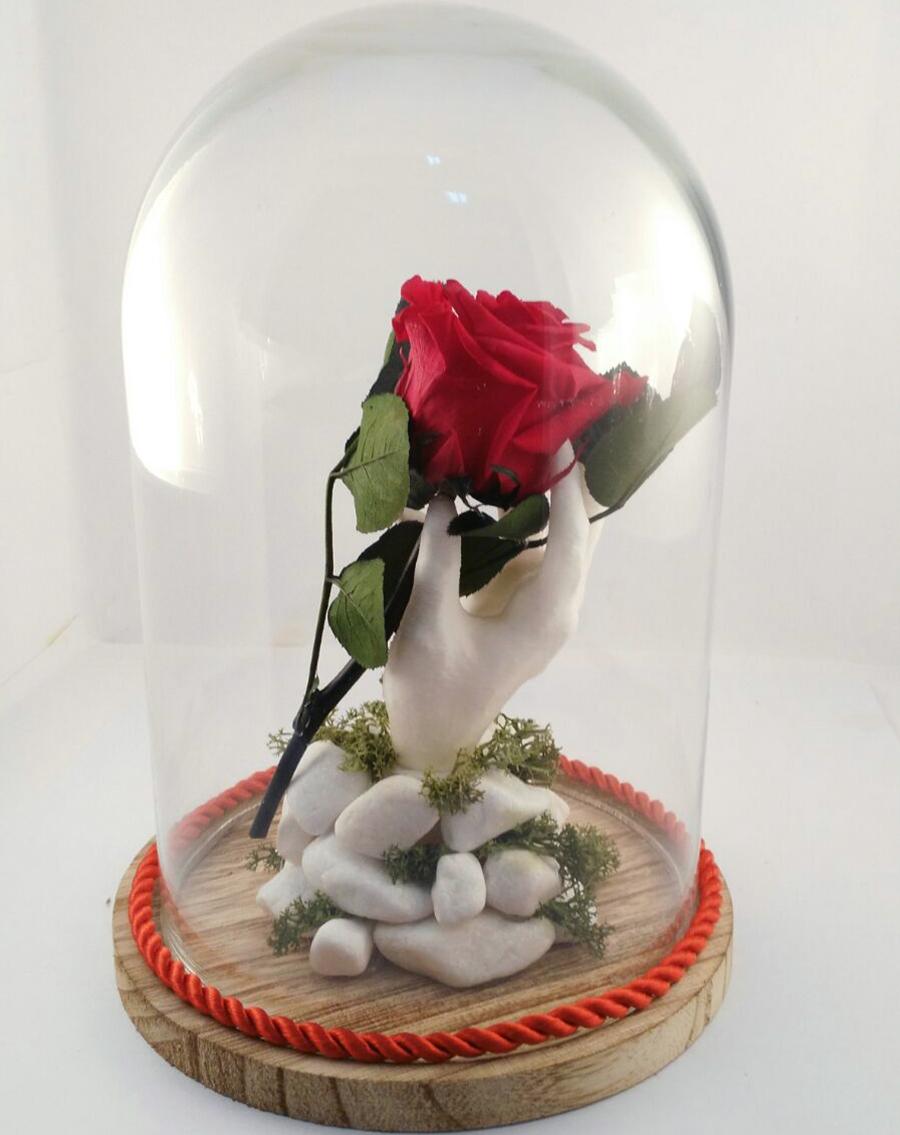 El Sentido Del Saber El Significado De Las Rosas Por Su Color