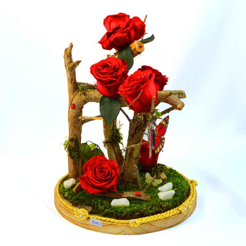 Rosa Eterna Bosque Encantado